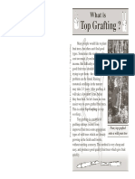 7_top_grafting.pdf
