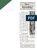 7_top_grafting.pdf