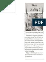 12_grafting.pdf