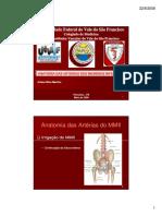 Anatomia das arterias MsIs.pdf