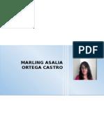 Hoja de Vida Marling Ortega 2016