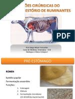 Aula 09. Afecções Digestória de Ruminantes