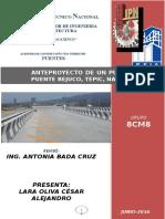 ANTEPROYCTO PUENTES.doc
