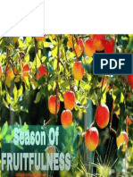 Divine Fruitfulness 3