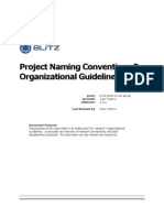 BLITZ Project Naming and Organizational Guidelines