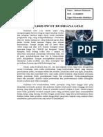 Tugas Wirausaha - Analisis SWOT Budidaya Ikan Lele