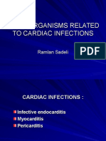 Microorganisms Related to Cardiac Infections