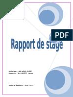 rapportdestagenagios-130305033951-phpapp01