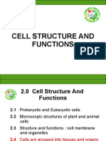 cell 4