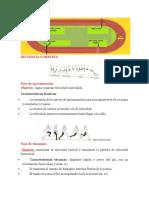 SECUENCIA COMPLETA.docx