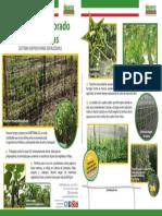 Breve Introducción a las HORTOMALLAS como soporte de hortalizas