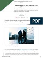 G. Faure, La politique des grands frères que dénonce [Rachida] Dati, c'était quoi? (2008)