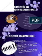 Equipo 1. Fundamentos Del Diagnostico Org.