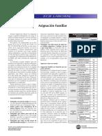 ecblab260310.pdf