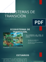 Ppt Ecosistemas de Transición