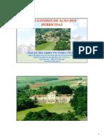 Aula teorica_mecanismo de acao_herbicida.pdf