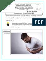 Formato Anexo Pca Guia App3