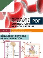 REGULACIÓN NERVIOSA DE LA CIRCULACIÓN Y CONTROL RÁPIDO DE LA PRESION ARTERIAL
