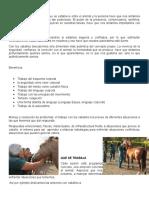 1clases de Equitacion Ancelmo Velgara