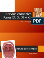 Nervios Craneales III-última