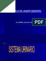 Clase Urogenital