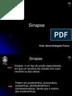 02_sinapse.pdf