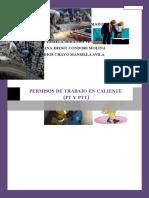 ELABORACION DE PERMISOS DE TRABAJOS EN CALIENTE (PT Y PTT).docx