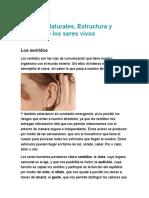 Ciencias Naturales.docx LOS SENTIDOS