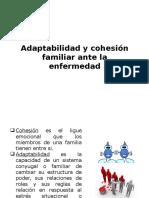 Adaptabilidad y Cohesión Familiar Ante La Enfermedad