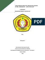 Laporan PKL SE Revisi