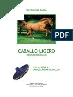 Caballo Ligero - Navarro Mollor - con portada.pdf