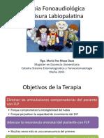 tto Fisura LP.pdf