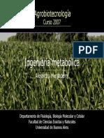 RUTAS DE SINTESIS DE METABOLITOS SEC.pdf
