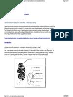 AC Radioactive Rem.pdf