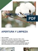 APERTURA Y CARDAS.pptx
