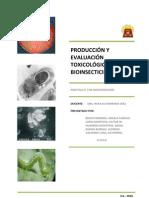 PRODUCCIÓN Y EVALUACIÓN TOXICOLÓGICA DE Bacillus thuringiensis