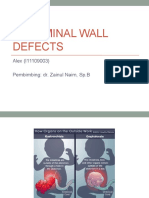 Abdominal Wall Defects.pptx