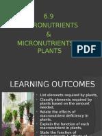 6.9 Macromicronutrients in Plants