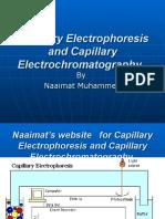 Capillary Electrophoresis and Capillary ElectrochromatographyNot MineNot Mine