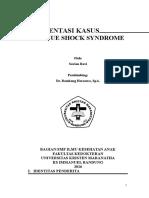 case DSS