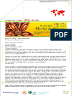Chakra Phool (Star Anise) Agro Products Manufacturers, Processors, Exporters, Suppliers, Traders in India FMCG Company