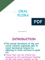 Oral Flora Oral Surgery