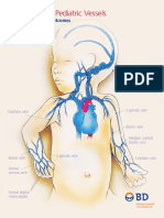 Neonatal and Pediatric Vessels