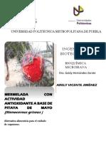 pitaya.pdf