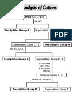Qualitative Analysis()