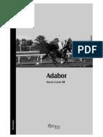 Adabor.pdf