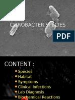 Lec 10citrobacter Spp