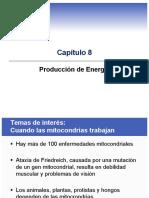 Bio Energetica
