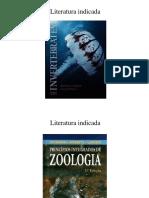 Caracterização Da Zoologia