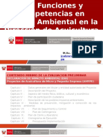 DECLARACION DE IMPACTO AMBINTAL.pptx